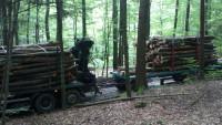 ardin-drva 011