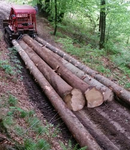 Prilagojeni gozdarski traktor na gosenicah
