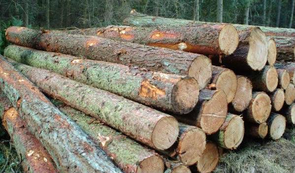 kwila-logs-for-sale